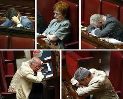 parlamentari 1